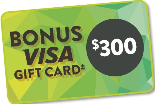 Bonus $300 Visa Card